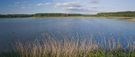 Kolem řeky Loučné a krajinou rybníků